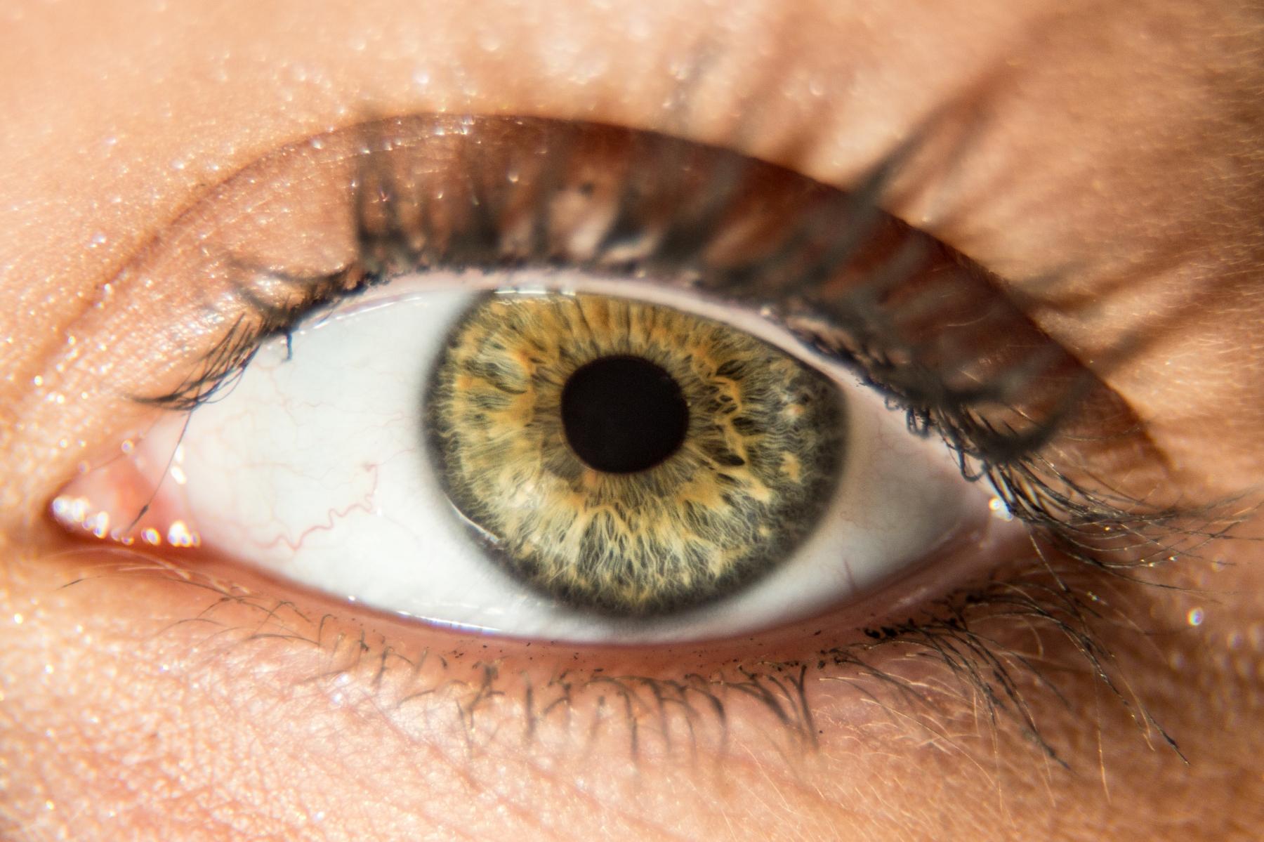 Elle eyes-3607