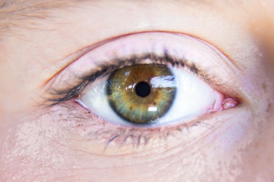 MK eyes-3657